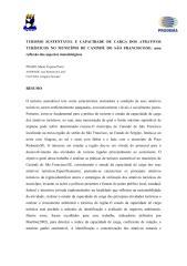 marta_virginia.pdf